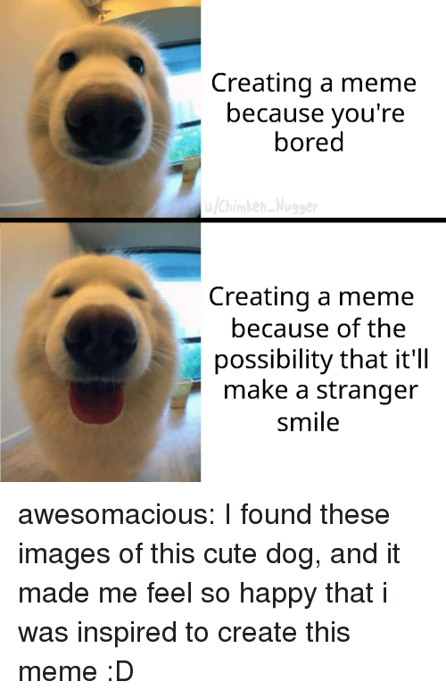 cute dog: Creating a meme  because you're  bored  Creating a meme  because of the  possibility that it'll  make a stranger  smile awesomacious:  I found these images of this cute dog, and it made me feel so happy that i was inspired to create this meme :D