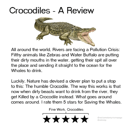 crocodiles: Crocodiles - A Review  All around the world, Rivers are facing a Pollution Crisis:  Filthy animals like Zebras and Water Buffalo are putting  their dirty mouths in the water. getting their spit all over  the place and sending it straight to the ocean for the  Whales to drink.  Luckily. Nature has devised a clever plan to put a stop  to this: The humble Crocodile. The way this works is that  now when dirty beasts want to drink from the river, they  get Killed by a Crocodile instead. What goes around  comes around. I rate them 5 stars for Saving the Whales.  Fine Work, Crocodiles  @welcometomymemepage  @wtmmp