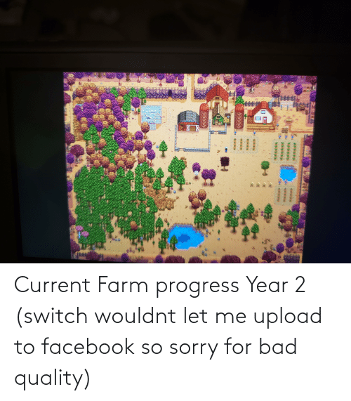 let me: Current Farm progress Year 2 (switch wouldnt let me upload to facebook so sorry for bad quality)