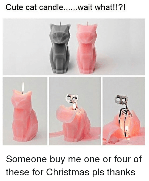 Memes, Candles, and 🤖: Cute cat candle  wait what! Someone buy me one or four of these for Christmas pls thanks