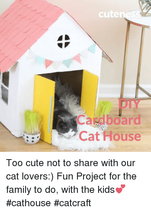 Memes, 🤖, and Project: cute  Cat House Too cute not to share with our cat lovers:)   Fun Project for the family to do, with the kids💕  #cathouse #catcraft