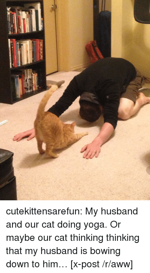 Aww, Tumblr, and Blog: cutekittensarefun:  My husband and our cat doing yoga. Or maybe our cat thinking thinking that my husband is bowing down to him… [x-post /r/aww]