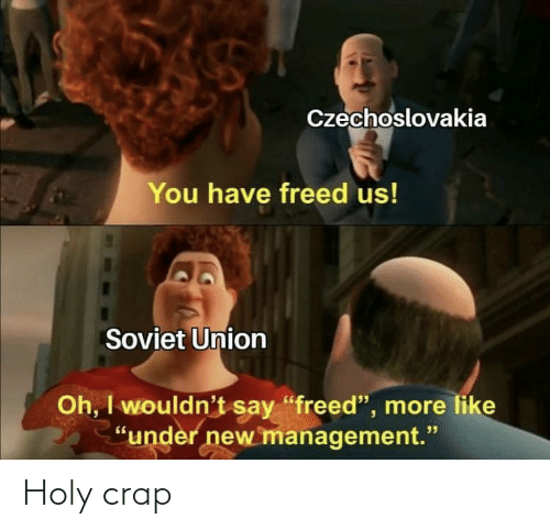 "Soviet Union: Czechoslovakia  You have freed us!  Soviet Union  Oh, I wouldn't say ""freed"", more like  ""under new management."" Holy crap"