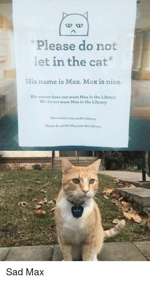 Does Not Want: D O  Please do not  let in the cat'  |  His name is Max. Max is nice.  His owner does not want Max in the Library  We do not want Max in the Library  Max wants to be in the Library  Please do not let Max into the Library  MAX Sad Max