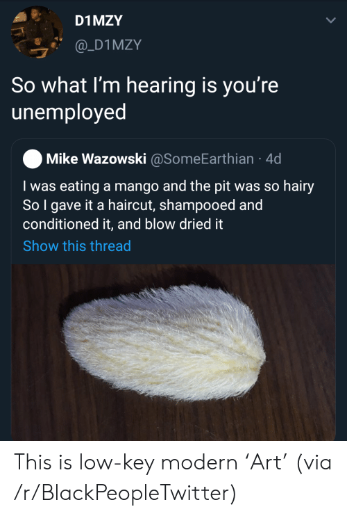 Unemployed: D1 MZY  @_D1MZY  So what I'm hearing is you're  unemployed  Mike Wazowski @SomeEarthian 4d  I was eating a mango and the pit was so hairy  So I gave it a haircut, shampooed and  conditioned it, and blow dried it  Show this thread This is low-key modern 'Art' (via /r/BlackPeopleTwitter)