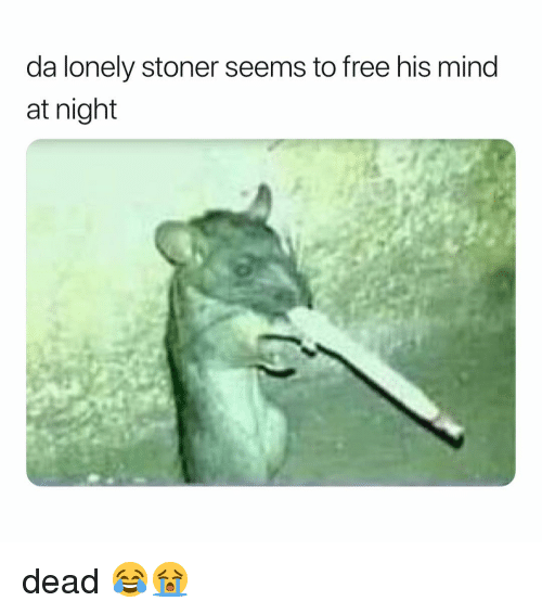 Weed, Free, and Marijuana: da lonely stoner seems to free his mind  at night dead 😂😭