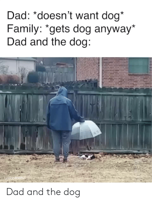 Dad, Family, and Dog: Dad: *doesn't want dog*  Family: *gets dog anyway*  Dad and the dog:  Walooloofan Dad and the dog