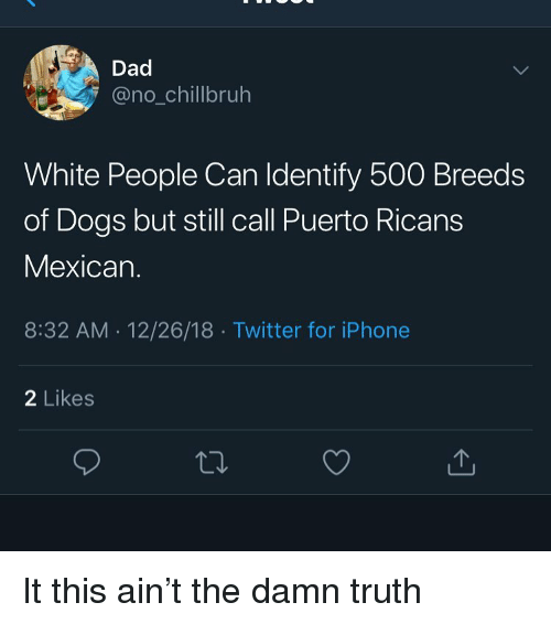 Dad, Dogs, and Funny: Dad  @no_chillbruh  White People Can ldentify 500 Breeds  of Dogs but still call Puerto Ricans  Mexican.  8:32 AM 12/26/18 Twitter for iPhone  2 Likes It this ain't the damn truth