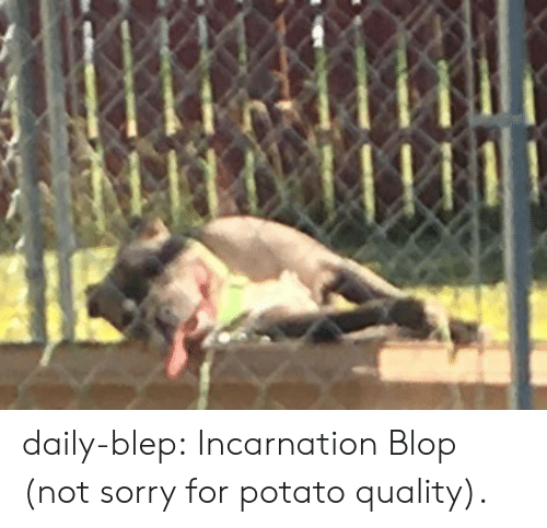 Incarnation: daily-blep:  Incarnation Blop (not sorry for potato quality).
