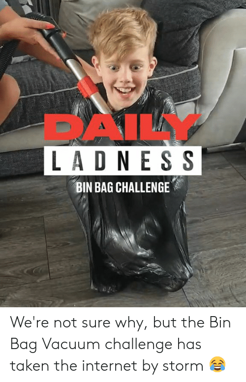 Dank, Internet, and Taken: DAILY  LADN ES S  BIN BAG CHALLENGE We're not sure why, but the Bin Bag Vacuum challenge has taken the internet by storm 😂