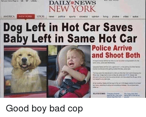 showbiz: DAILY NEws  NEW YORK  AMERICA  NEW YORK  LOCAL news poitics sports showbiz. I opinion living photos videoautos  Dog Left in Hot Car Saves  Baby Left in Same Hot Car  Police Arrive  and Shoot Both Good boy bad cop