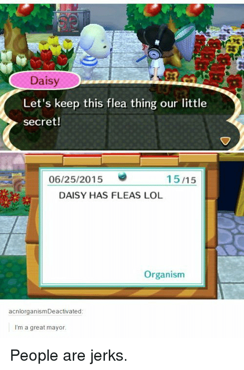organism: Daisy  20  Let's keep this flea thing our little  secret!  06/25/2015  15/15  DAISY HAS FLEAS LOL  Organism  acnlorganismDeactivated  I'm a great mayor People are jerks.