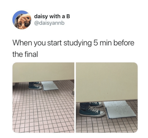 Daisy, You, and Final: daisy with a B  @daisyannb  When you start studying 5 min before  the final