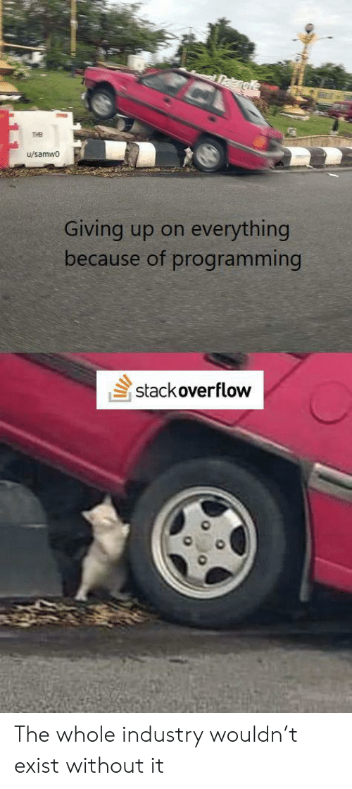 Programming, Stack, and Stack Overflow: Dakangle  THB  u/samwo  everything  Giving up on  because of programming  stack overflow The whole industry wouldn't exist without it