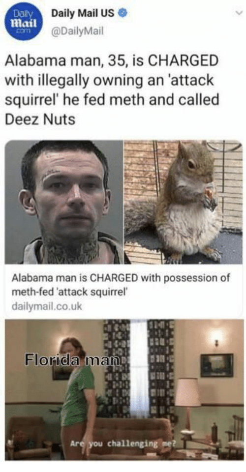 Deez Nuts, Florida Man, and Alabama: Dalily  Daily Mail US  Mail@DailyMail  com  Alabama man, 35, is CHARGED  with illegally owning an 'attack  squirrel' he fed meth and called  Deez Nuts  Alabama man is CHARGED with possession of  meth-fed 'attack squirrel  dailymail.co.uk  Florida man  Are you challenging me