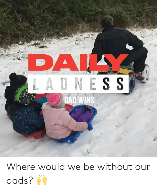Dad, Dank, and 🤖: DALY  LADNESS  DAD WINS Where would we be without our dads? 🙌