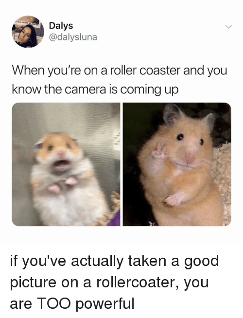 Taken, Camera, and Good: Dalys  @dalysluna  When you're on a roller coaster and you  know the camera is coming up if you've actually taken a good picture on a rollercoater, you are TOO powerful