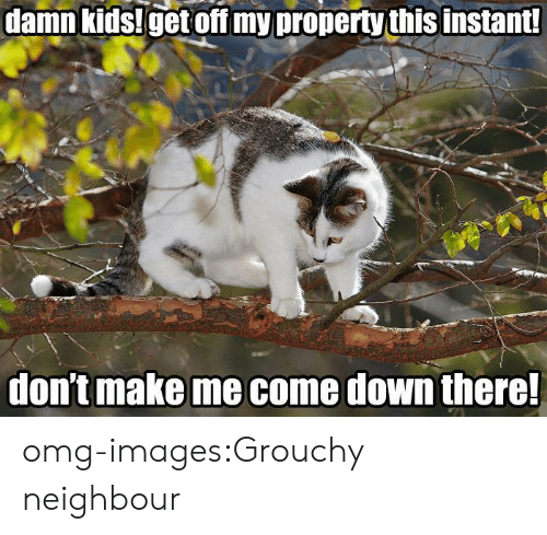 grouchy: damn  kids!get  off  my  property  this  instant  dontmake me come down there omg-images:Grouchy neighbour