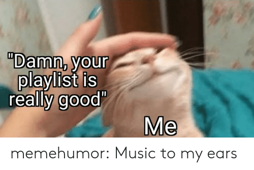 "ears: ""Damn, your  playlist is  really good'  Me memehumor:  Music to my ears"