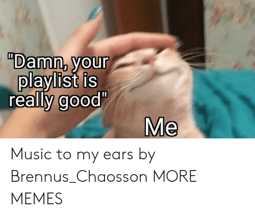 "ears: ""Damn, your  playlist is  really good'  Me Music to my ears by Brennus_Chaosson MORE MEMES"