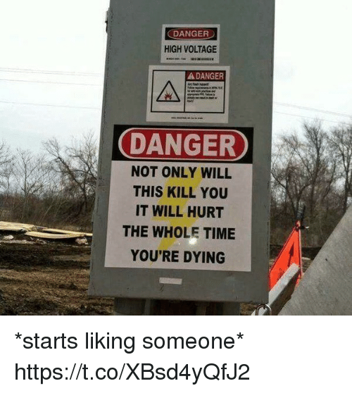 voltage: DANGER  HIGH VOLTAGE  A DANGER  DANGER  NOT ONLY WILL  THIS KILL YOU  IT WILL HURT  THE WHOLE TIME  YOU'RE DYING *starts liking someone* https://t.co/XBsd4yQfJ2