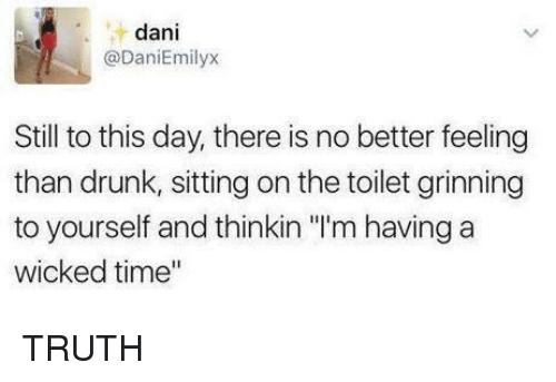 """Drunk, Memes, and Time: dani  @DaniEmilyx  Still to this day, there is no better feeling  than drunk, sitting on the toilet grinning  to yourself and thinkin """"'m having a  wicked time"""" TRUTH"""