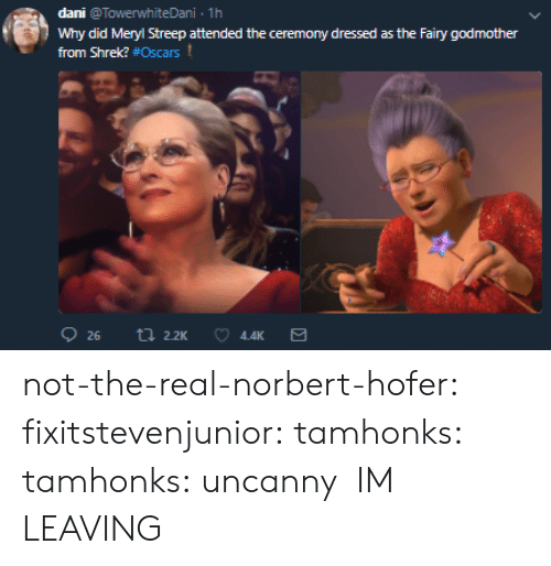 Oscars, Shrek, and Target: dani @TowerwhiteDani 1h  Why did Meryl Streep attended the ceremony dressed as the Fairy godmother  from Shrek? #Oscars t  4.4K not-the-real-norbert-hofer:  fixitstevenjunior:  tamhonks:  tamhonks: uncanny    IM LEAVING