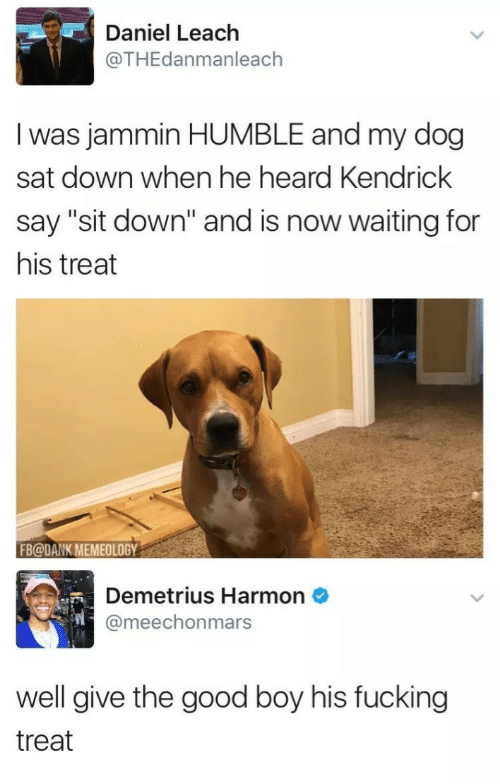 """Memeology: Daniel Leach  @THEdanmanleach  I was jammin HUMBLE and my dog  sat down when he heard Kendrick  say """"sit down"""" and is now waiting for  his treat  FB@DANK MEMEOLOGY  Demetrius Harmon  @meechonmars  well give the good boy his fucking  treat"""