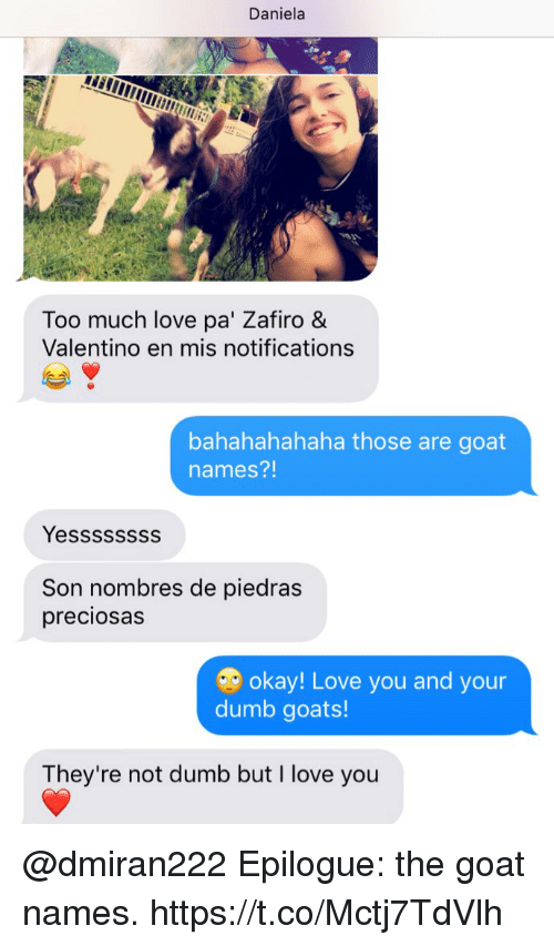Dumb, Love, and Memes: Daniela  Too much love pa' Zafiro &  Valentino en mis notifications  bahahahahaha those are goat  names?!  Yessssssss  Son nombres de piedras  preciosas  okay! Love you and your  dumb goats!  They're not dumb but I love you @dmiran222 Epilogue: the goat names. https://t.co/Mctj7TdVlh