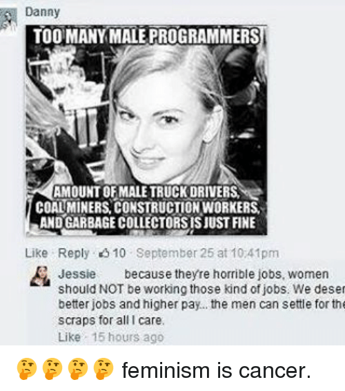 dannys: Danny  TOO MANY MALE PROGRAMMERS  AMOUNT OF MALE TRUCKDRIVERSI  COALMINERS CONSTRUCTIONWORKERS.  ANDGARBAGECOLLECTORSISJUST FINE  Like Reply 10 September 25 at 10 41pm  Jessie  because theyre horrible jobs, women  should NOT be working those kind of jobs. We deset  better jobs and higher pay... the men can settle for the  scraps for all I care.  Like 15 hours ago 🤔🤔🤔🤔 feminism is cancer.