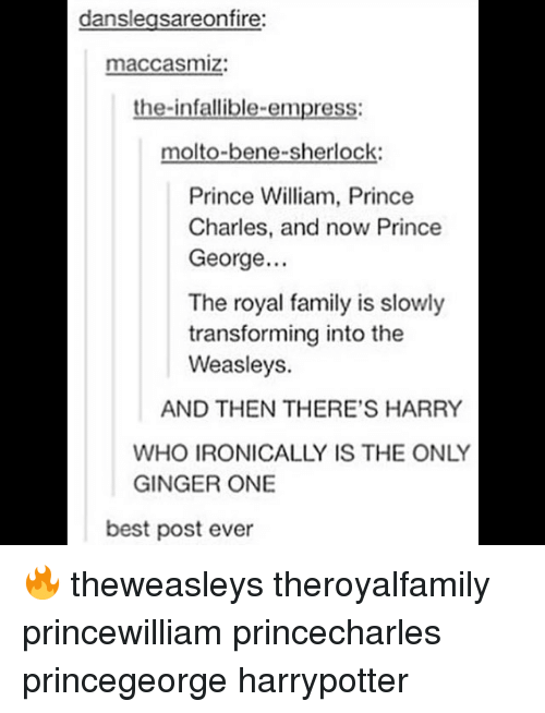 Gingerism: danslegsareonfire:  maccasmiz:  the-infallible-empress:  molto-bene-sherlock  Prince William, Prince  Charles, and now Prince  George..  The royal family is slowly  transforming into the  Weasleys.  AND THEN THERE'S HARRY  WHO IRONICALLY IS THE ONLY  GINGER ONE  best post ever 🔥 theweasleys theroyalfamily princewilliam princecharles princegeorge harrypotter