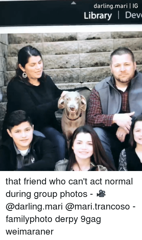 9gag, Memes, and Library: darling.mari | IG  Library | Dev that friend who can't act normal during group photos - 🎥@darling.mari @mari.trancoso - familyphoto derpy 9gag weimaraner