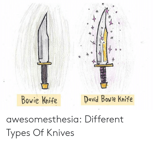 David Bowie, Tumblr, and Blog: David Bowie Knife  Bowie Knife awesomesthesia:  Different Types Of Knives