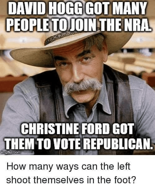 Memes, Ford, and 🤖: DAVID HOGGGOT MANY  PEOPLETOTOIN THE NRA  CHRISTINE FORD GOT  THEM  TO VOTE REPUBLICAN.  malup.com  How many ways can the left  shoot themselves in the foot?