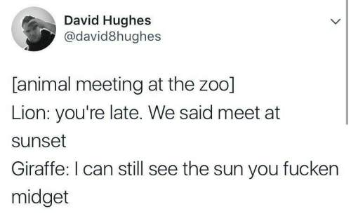 Animal, Giraffe, and Lion: David Hughes  @david8hughes  [animal meeting at the zoo]  Lion: you're late. We said meet at  sunset  Giraffe: I can still see the sun you fucken  midget