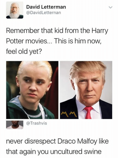 Harry Potter, Movies, and David Letterman: David Letterman  @DavidLetternan  Remember that kid from the Harry  Potter movies... This is him now,  feel old yet?  @Trashvis  never disrespect Draco Malfoy like  that again you uncultured swine