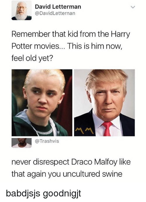 Harry Potter, Memes, and Movies: David Lettermarn  @DavidLetternan  Remember that kid from the Harry  Potter movies... This is him now,  feel old yet?  @Trashvis  never disrespect Draco Malfoy like  that again you uncultured swine babdjsjs goodnigjt