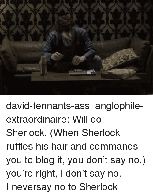 ruffles: david-tennants-ass:  anglophile-extraordinaire:     Will do, Sherlock. (When Sherlock ruffles his hair and commands you to blog it, you don't say no.)    you're right, i don't say no.  I neversay no to Sherlock