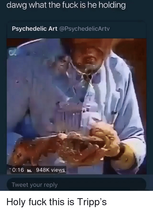 psychedelic: dawg what the fuck is he holding  Psychedelic Art @PsychedelicArtv  0:16 l 948K views  Tweet your reply Holy fuck this is Tripp's