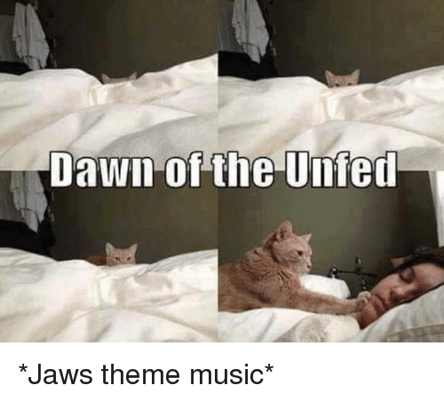 Memes, Music, and Dawn: Dawn of the Unfed *Jaws theme music*