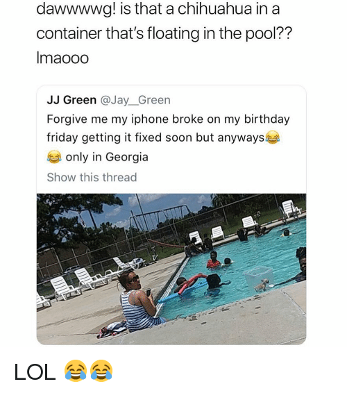 Birthday, Chihuahua, and Friday: dawwwwg! is that a chihuahua in a  container that's floating in the pool??  Imaooo  JJ Green @Jay_Green  Forgive me my iphone broke on my birthday  friday getting it fixed soon but anyways  only in Georgia  Show this thread LOL 😂😂