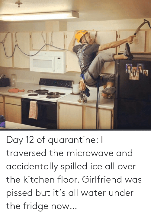 pissed: Day 12 of quarantine: I traversed the microwave and accidentally spilled ice all over the kitchen floor. Girlfriend was pissed but it's all water under the fridge now…