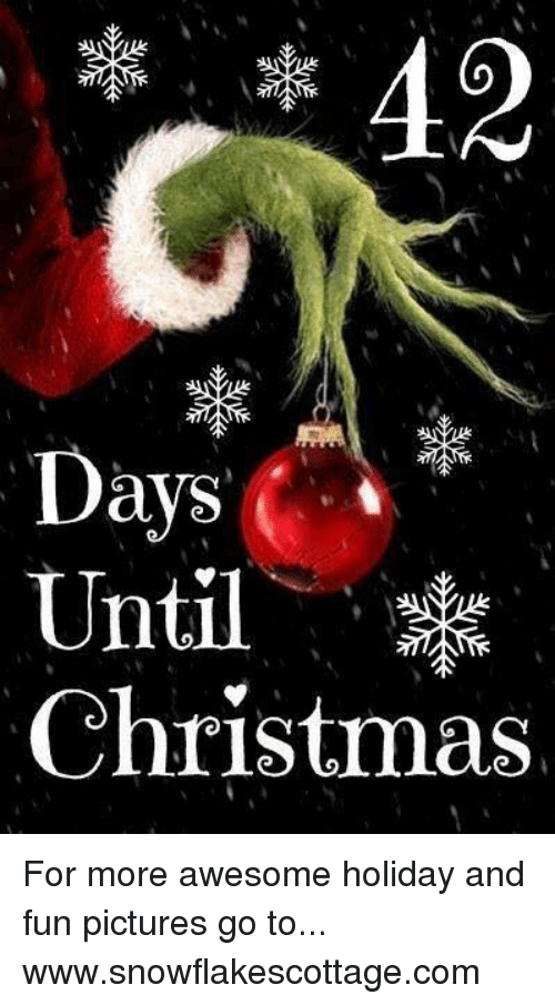 How Many Days Until Christmas Meme.Days I Until Christmas For More Awesome Holiday And Fun
