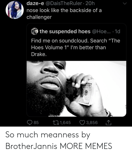 """Ruler: daze-e @DaisThe Ruler 20h  nose look like the backside of a  challenger  the suspended hoes @Hoe.. 1d  Find me on soundcloud. Search """"The  Hoes Volume 1"""" I'm better than  Drake.  11,645  3,856  85 So much meanness by BrotherJannis MORE MEMES"""