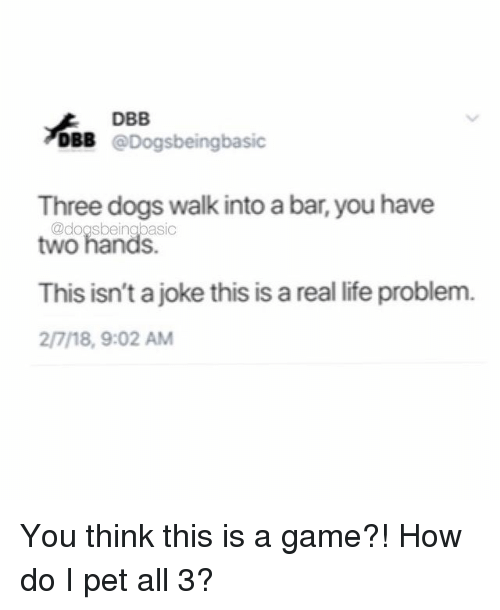Dogs, Life, and Memes: DBB  DBB @Dogsbeingbasic  Three dogs walk into a bar, you have  This isn't a joke this is a real life problem.  two hands.  @dogsbeingbasic  2/7/18, 9:02 AM You think this is a game?! How do I pet all 3?