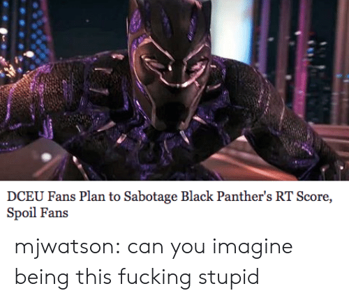 Black Panthers: DCEU Fans Plan to Sabotage Black Panther's RT Score,  Spoil Fans mjwatson:  can you imagine being this fucking stupid