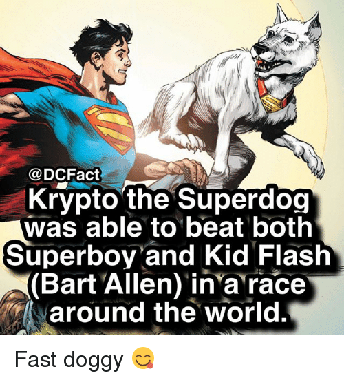 Memes, Bart, and World: DCFact  Krypto the Superdog  was able to beat both  Superboy and Kid Flash  (Bart Allen) in'a race  around the world. Fast doggy 😋