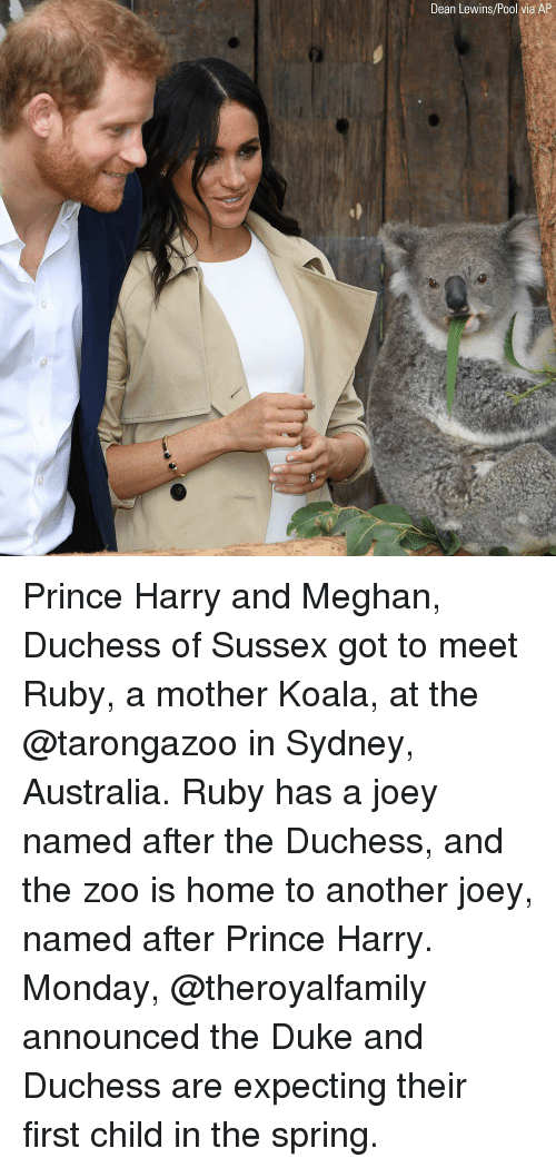 Memes, Prince, and Prince Harry: Dean Lewins/Pool via AP Prince Harry and Meghan, Duchess of Sussex got to meet Ruby, a mother Koala, at the @tarongazoo in Sydney, Australia. Ruby has a joey named after the Duchess, and the zoo is home to another joey, named after Prince Harry. Monday, @theroyalfamily announced the Duke and Duchess are expecting their first child in the spring.