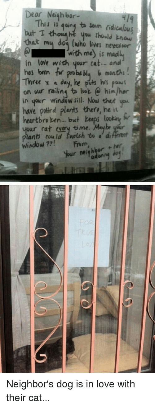 Thathappened: Dear Neighbor-  This is going ta sum ridiculous  but I th  you thould know  that my dog (who GVMI with me is mad  in love with your cat... and  hos bein for pro bu  blu 6 months  Thre a day, he his pawf  on our railing to lok himlher  in your window sill. Now you  have polld plants there, he it  heartbro men... but beeps lookant  our cat every time. Maybe y r  plant could switch to a di  Window  her.  r neighbor Neighbor's dog is in love with their cat...