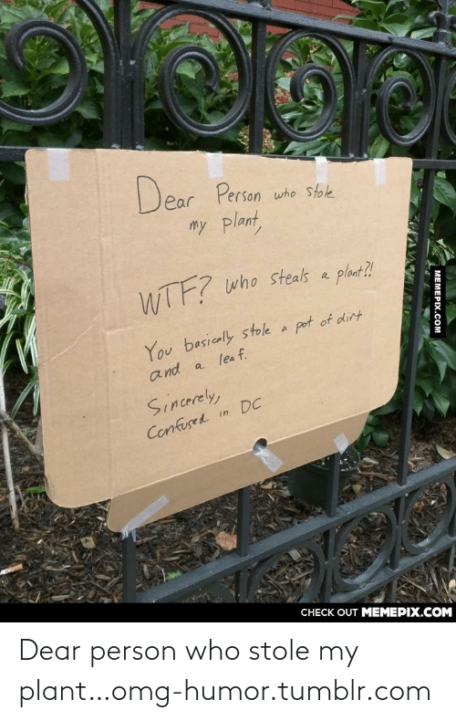 Who Stole: Dear Person  who stole  my plant,  WTF?  who steals a  plant?!  pot of dirt  You basically stole a  and a lea f.  Sincerely,  Cenfused in DC  CНECK OUT MЕМЕРIХ.COM  MEMEPIX.COM Dear person who stole my plant…omg-humor.tumblr.com
